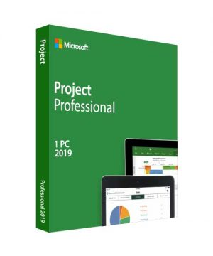 Project Professional